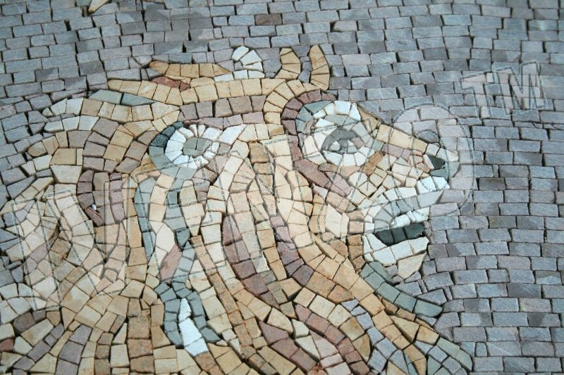Mosaic FK011 Details sign of the zodiac leo 1