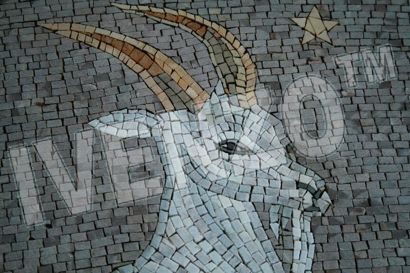 Mosaic FK016 Details sign of the zodiac capricorn 1
