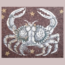 Mosaic sign of the zodiac cancer